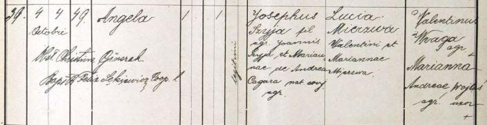 1893 Szyja Mierzwa ur