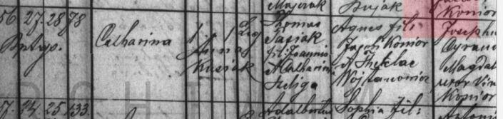 Katarzyna 1893 wrzesien ur c Tomasza łetownia