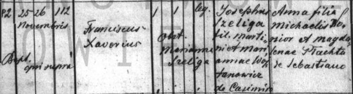 szeliga 1890Łetwnia